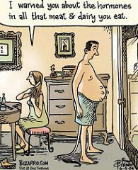 dairy-hormone-cartoon